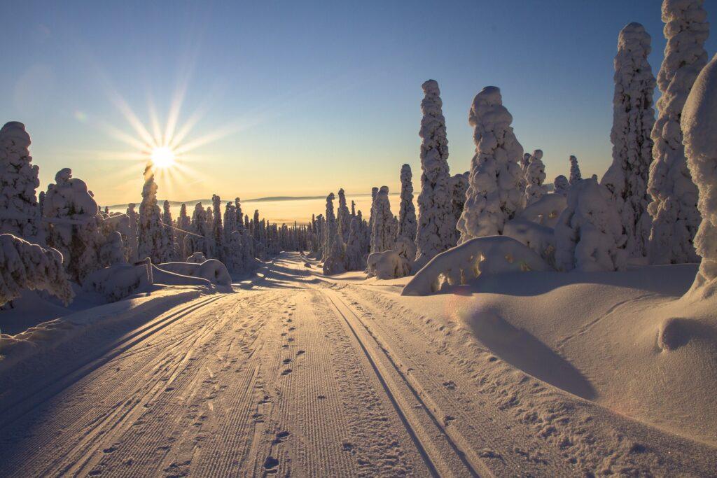 Reisgids Finland: rendieren en het noorderlicht