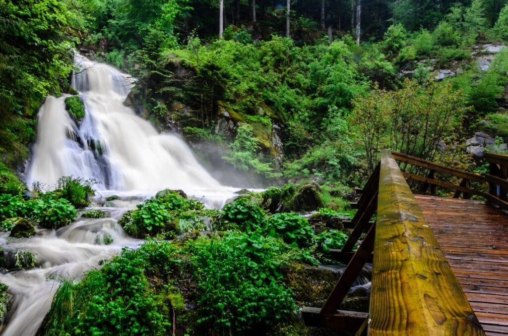 Roadtrip voor een actieve vakantie door het Zwarte woud