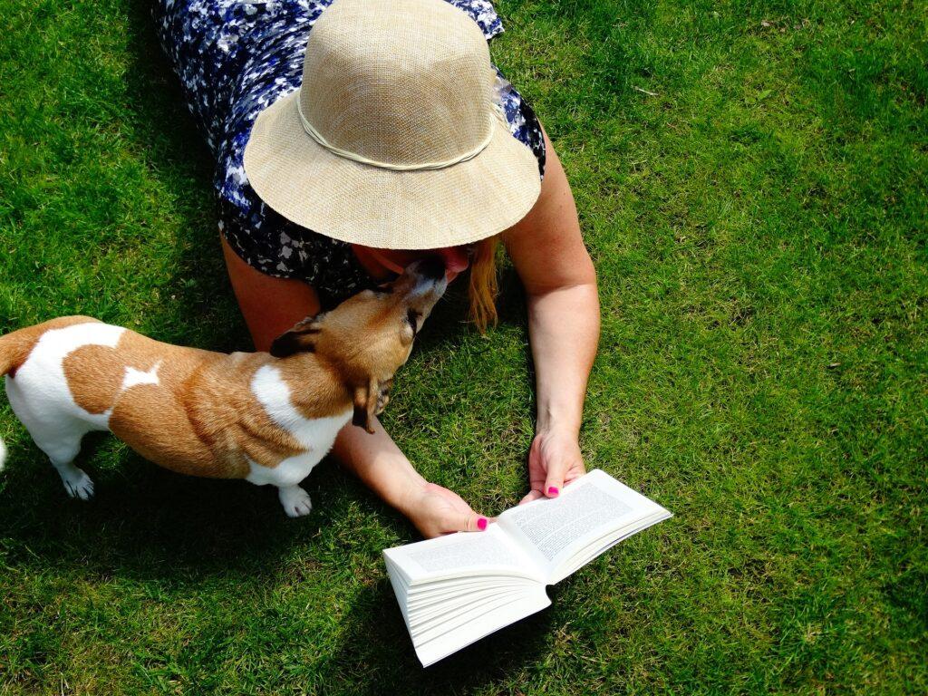 Het geheim van een leuke vakantie met hond
