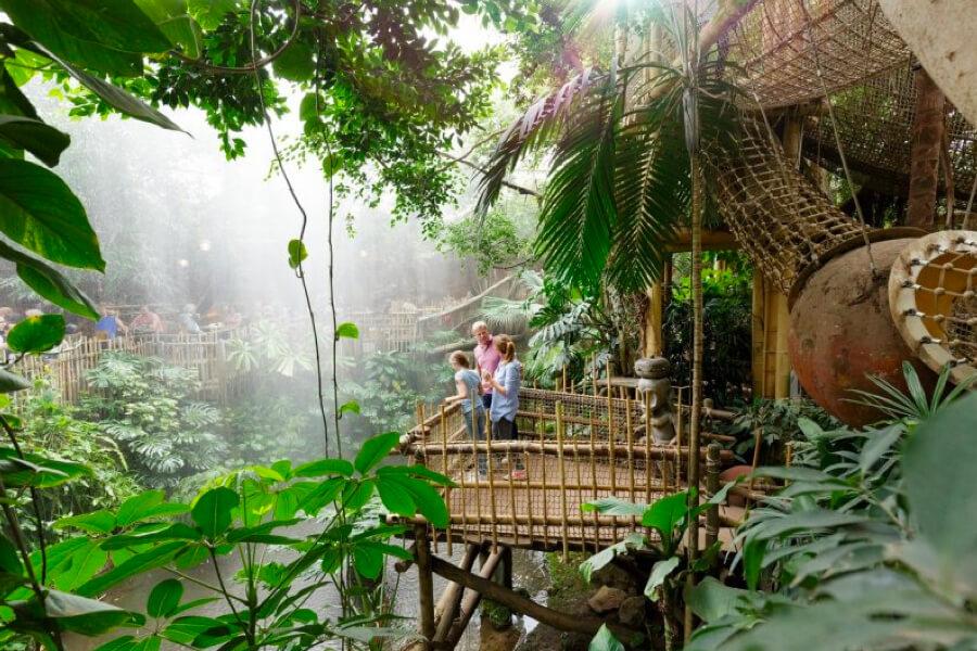 Center Parcs Het Heijderbos jungledome