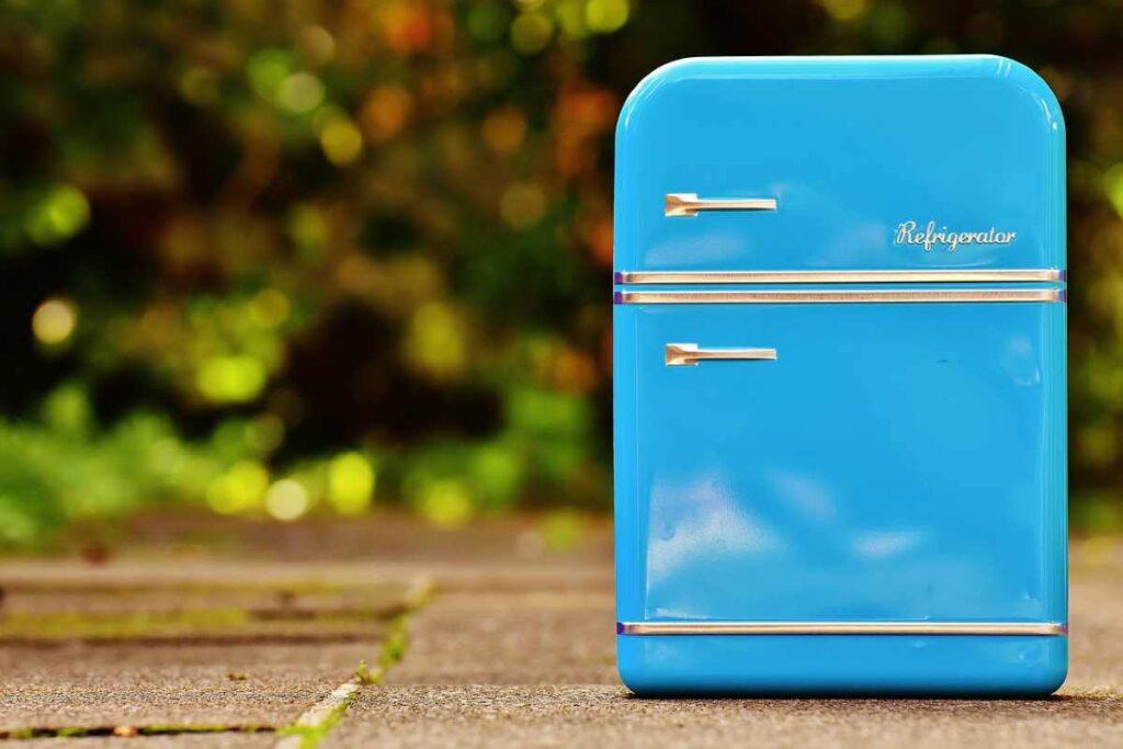 Camping koelkast kiezen: 10 beste koelboxen & tips