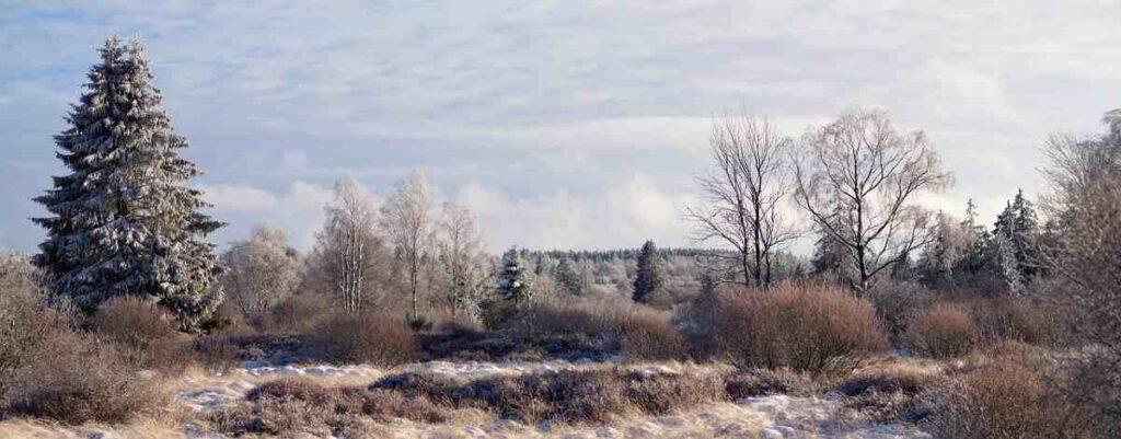 8x doen tijdens de winter in Antwerpen