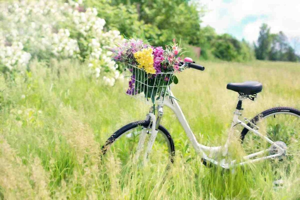 Neem op vakantie je fiets mee